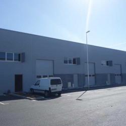 Location Entrepôt La Farlède 294 m²