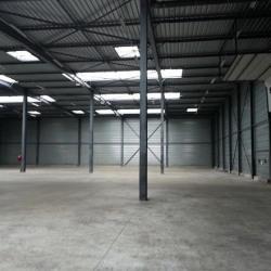 Vente Local d'activités Morangis 2300 m²