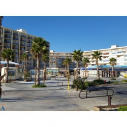 Location Local commercial Canet-en-Roussillon 320,55 m²
