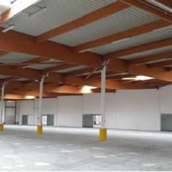Vente Entrepôt Saint-Quentin-Fallavier 1807 m²