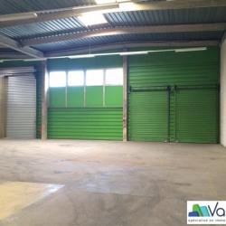 Location Local d'activités Torcy 1244 m²