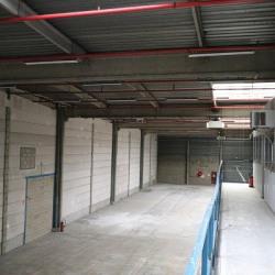 Location Local d'activités Rosny-sous-Bois 1500 m²