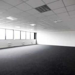 Location Local d'activités Lisses 3618 m²