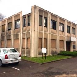 Vente Local d'activités Tremblay-en-France 800 m²