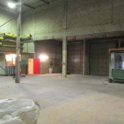 Location Entrepôt Fontenay-sous-Bois 346 m²