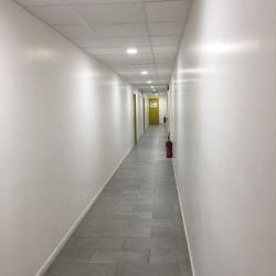 Location Bureau Le Plessis-Robinson 163 m²