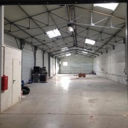Location Local d'activités Andeville 550 m²