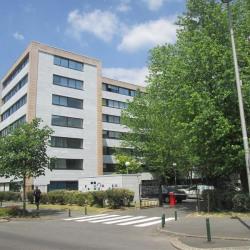 Vente Bureau Noisy-le-Grand 235 m²