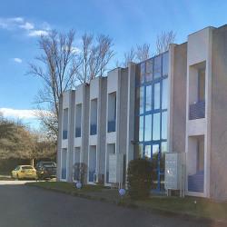 Location Bureau Ramonville-Saint-Agne 60 m²