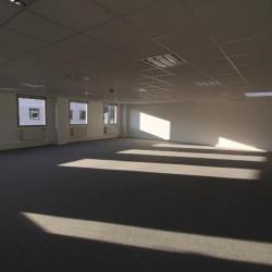 Location Bureau Fontenay-sous-Bois 249 m²
