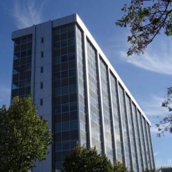Location Bureau Marseille 2ème 2997 m²