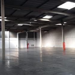 Location Entrepôt Épône 14176 m²