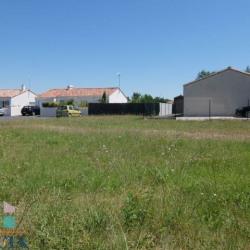 Vente Terrain Saint-Jean-de-Monts 0 m²