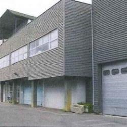 Vente Local d'activités Émerainville 3566 m²