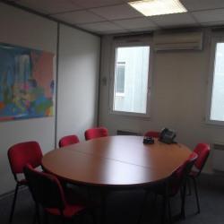 Location Bureau Lyon 7ème 366 m²