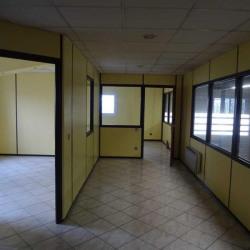 Location Local d'activités Le Thillay 545 m²