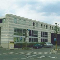 Location Bureau Sucy-en-Brie 300 m²