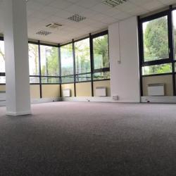 Location Bureau Guyancourt 135 m²