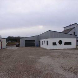 Location Entrepôt Surbourg 250 m²