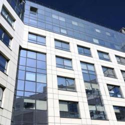 Location Bureau Boulogne-Billancourt 234 m²