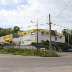 Location Local d'activités Chaponost 1340 m²