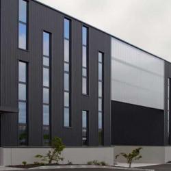 Location Local d'activités Castelnau-d'Estrétefonds 1023 m²
