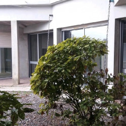 Location Local commercial Portet-sur-Garonne (31120)