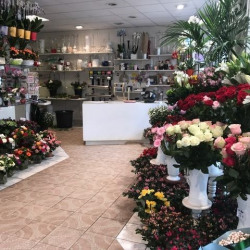 Location Local commercial Colombes 79 m²