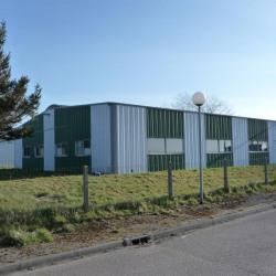 Vente Local d'activités Dieppe 320 m²