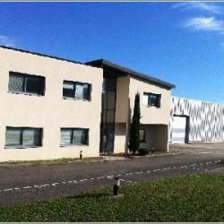 Vente Local d'activités Saint-Quentin-Fallavier 2396 m²