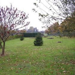 Vente Terrain Champigné 920 m²