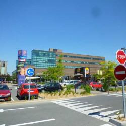 Location Bureau Villeneuve-d'Ascq 893 m²