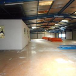 Location Local d'activités Fenouillet 2000 m²