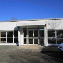 Location Bureau Saint-Jean-d'Illac 300 m²