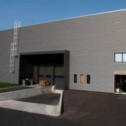 Vente Local d'activités Houdan 1709 m²
