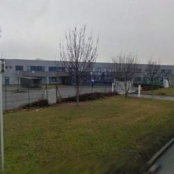 Location Local d'activités Saint-Quentin-Fallavier 2163 m²