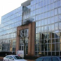 Vente Bureau Saint-Germain-en-Laye 444 m²