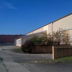 Location Local d'activités Mions (69780)