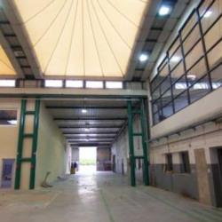 Vente Entrepôt Marolles-en-Brie 566 m²