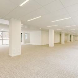 Location Bureau Issy-les-Moulineaux 8819 m²