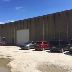 Location Entrepôt Bons-en-Chablais 600 m²