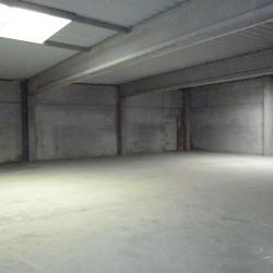 Location Local d'activités Bondues 350 m²
