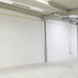 Location Local d'activités Moissy-Cramayel 2943 m²