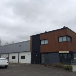 Vente Local d'activités Villemandeur 1414 m²