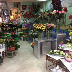 Vente Local commercial Gif-sur-Yvette (91190)