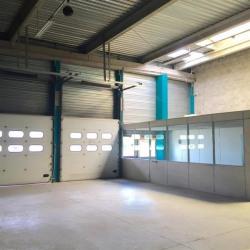Location Local d'activités Bron 3302 m²