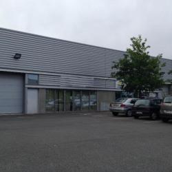 Location Local d'activités Saint-Jacques-de-la-Lande 296 m²