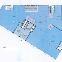 Location Bureau Lyon 7ème 3673 m²