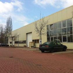 Location Entrepôt Hangenbieten 1100 m²