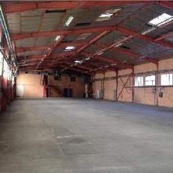 Location Local d'activités Décines-Charpieu 2319 m²